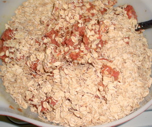 oatmeal oadded