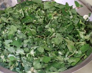 Greens in sink - www.inhabitedkitchen.com