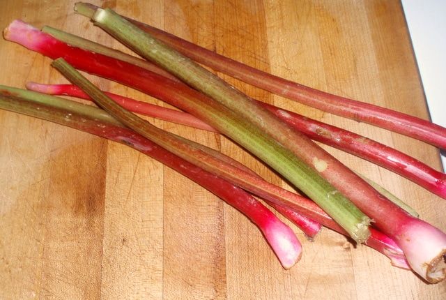 Rhubarb - www.inhabitedkitchen.com