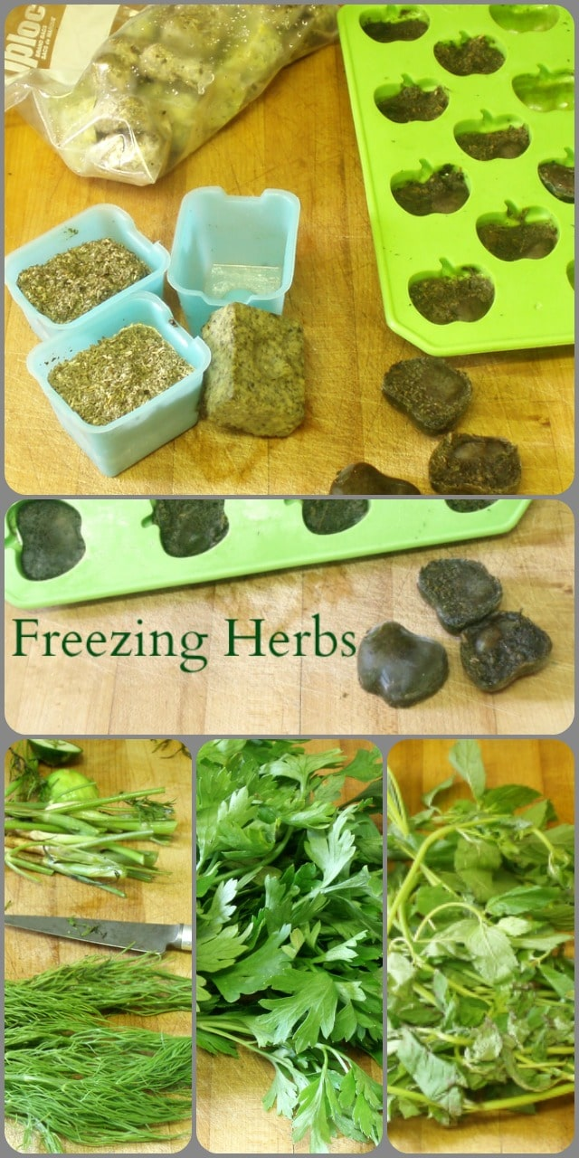 Freeze fresh herbs in a convenient form to use later - just drop a frozen herb cube into sauces, salad dressings, or anything you cook!