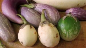 Assosrted mini eggplant - www.inhabitedkitchen.com