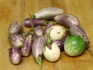 Baby Eggplant - www.inhabitedkitchen.com