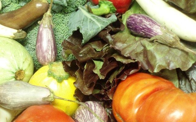 September Harvest - CSA share - www.inhabitedkitchen.com