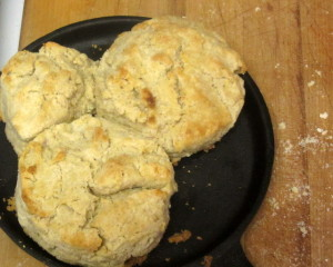 A tender delicate gluten free biscuit - all whole grain, no added starch. www.inhabitedkitchen.com