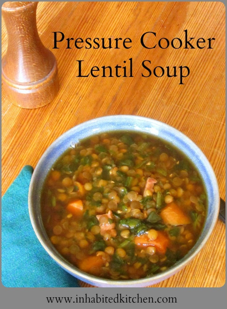 Lentil Soup in a pressure cooker - fast, easy, and delicious, Great for warm days and chilly nights - don't heat up the kitchen!