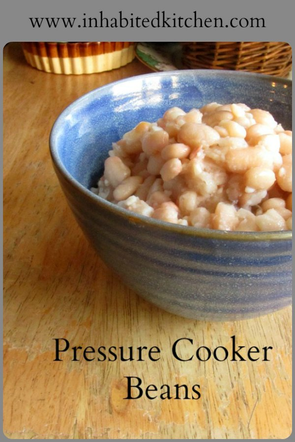 Use an electric pressure cooker, an Instant Pot or any other, to cook beans easily and quickly!